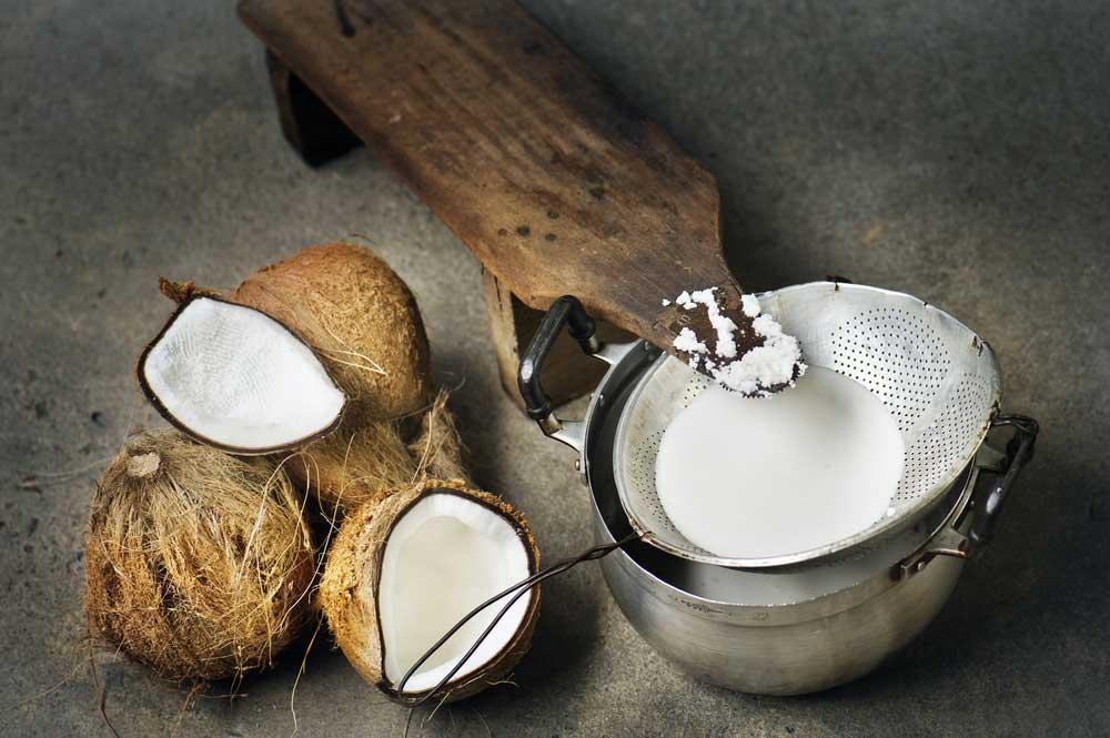 O leite de coco pode substituir o leite comum e traz ainda mais benefícios